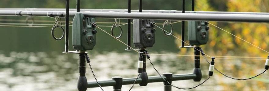 Débuter la pêche à la carpe