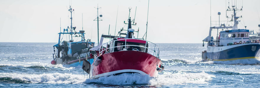 Flotte de bateaux